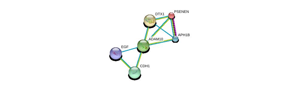 http://string-db.org/version_10/api/image/networkList?limit=0&targetmode=proteins&caller_identity=gene_cards&network_flavor=evidence&identifiers=9606.ENSP00000260408%0d%0a9606.ENSP00000222266%0d%0a9606.ENSP00000257600%0d%0a9606.ENSP00000261769%0d%0a9606.ENSP00000261879%0d%0a9606.ENSP00000265171%0d%0a