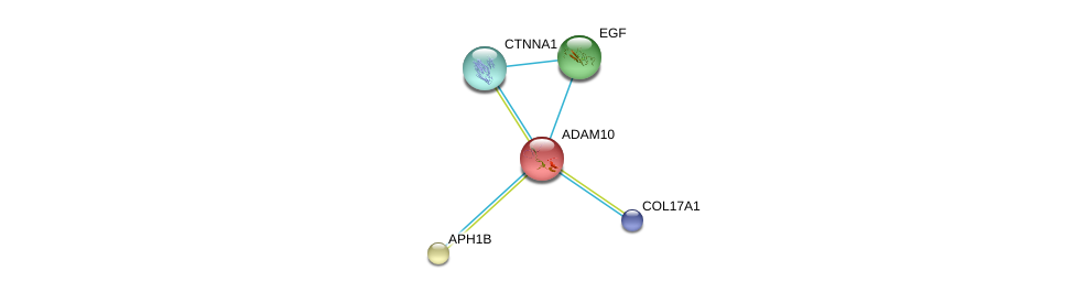http://string-db.org/version_10/api/image/networkList?limit=0&targetmode=proteins&caller_identity=gene_cards&network_flavor=evidence&identifiers=9606.ENSP00000260408%0d%0a9606.ENSP00000304669%0d%0a9606.ENSP00000265171%0d%0a9606.ENSP00000261879%0d%0a9606.ENSP00000340937%0d%0a9606.ENSP00000340937%0d%0a