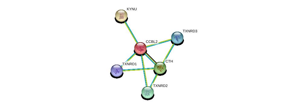 http://string-db.org/version_10/api/image/networkList?limit=0&targetmode=proteins&caller_identity=gene_cards&network_flavor=evidence&identifiers=9606.ENSP00000260508%0d%0a9606.ENSP00000434516%0d%0a9606.ENSP00000359976%0d%0a9606.ENSP00000430031%0d%0a9606.ENSP00000264170%0d%0a9606.ENSP00000383365%0d%0a