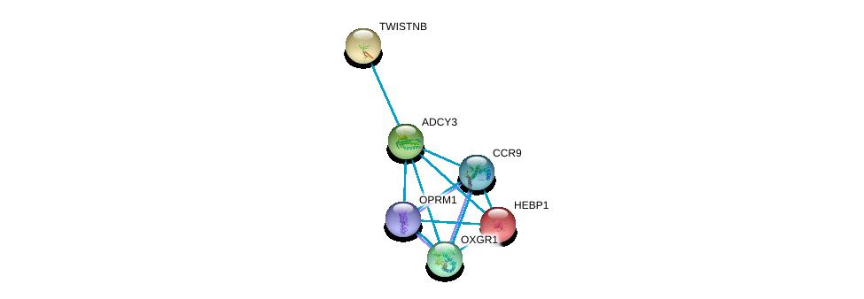 http://string-db.org/version_10/api/image/networkList?limit=0&targetmode=proteins&caller_identity=gene_cards&network_flavor=evidence&identifiers=9606.ENSP00000260600%0d%0a9606.ENSP00000014930%0d%0a9606.ENSP00000350256%0d%0a9606.ENSP00000298440%0d%0a9606.ENSP00000222567%0d%0a9606.ENSP00000394624%0d%0a