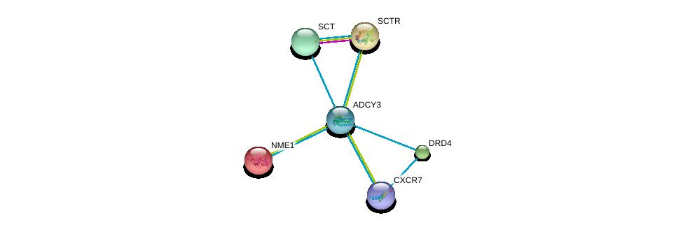 http://string-db.org/version_10/api/image/networkList?limit=0&targetmode=proteins&caller_identity=gene_cards&network_flavor=evidence&identifiers=9606.ENSP00000260600%0d%0a9606.ENSP00000272928%0d%0a9606.ENSP00000013034%0d%0a9606.ENSP00000019103%0d%0a9606.ENSP00000176183%0d%0a9606.ENSP00000176195%0d%0a