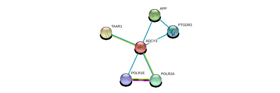 http://string-db.org/version_10/api/image/networkList?limit=0&targetmode=proteins&caller_identity=gene_cards&network_flavor=evidence&identifiers=9606.ENSP00000260600%0d%0a9606.ENSP00000284981%0d%0a9606.ENSP00000314949%0d%0a9606.ENSP00000275216%0d%0a9606.ENSP00000367029%0d%0a9606.ENSP00000332812%0d%0a