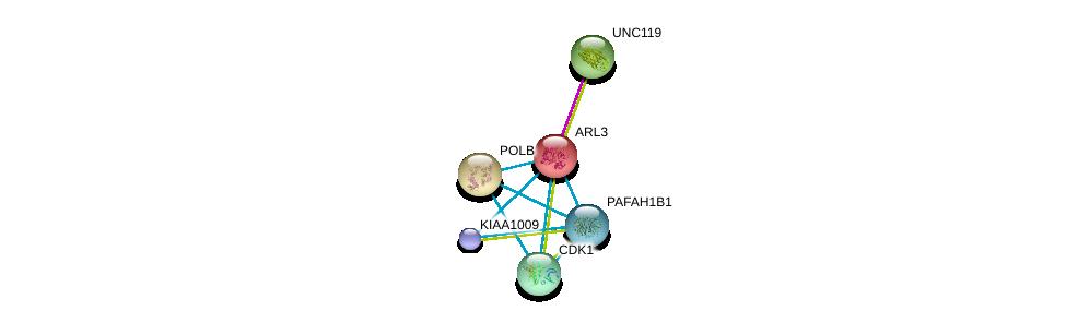 http://string-db.org/version_10/api/image/networkList?limit=0&targetmode=proteins&caller_identity=gene_cards&network_flavor=evidence&identifiers=9606.ENSP00000260746%0d%0a9606.ENSP00000337040%0d%0a9606.ENSP00000385215%0d%0a9606.ENSP00000265421%0d%0a9606.ENSP00000378699%0d%0a9606.ENSP00000380378%0d%0a