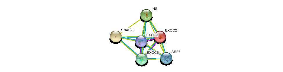http://string-db.org/version_10/api/image/networkList?limit=0&targetmode=proteins&caller_identity=gene_cards&network_flavor=evidence&identifiers=9606.ENSP00000260762%0d%0a9606.ENSP00000323377%0d%0a9606.ENSP00000230449%0d%0a9606.ENSP00000249647%0d%0a9606.ENSP00000250971%0d%0a9606.ENSP00000298316%0d%0a