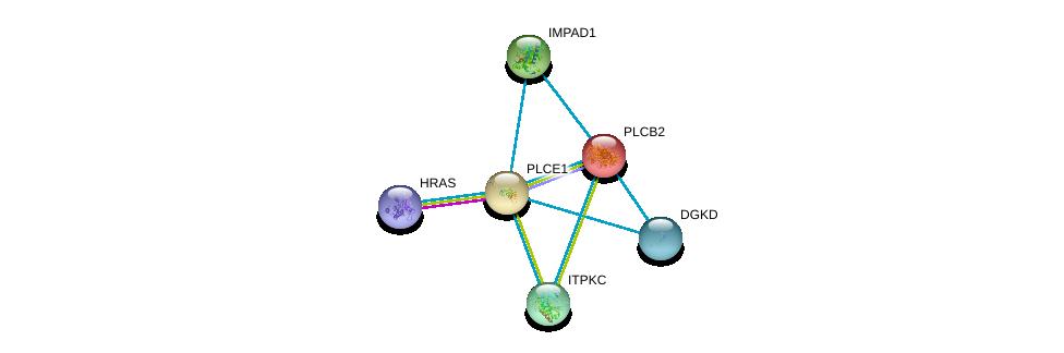 http://string-db.org/version_10/api/image/networkList?limit=0&targetmode=proteins&caller_identity=gene_cards&network_flavor=evidence&identifiers=9606.ENSP00000260766%0d%0a9606.ENSP00000309845%0d%0a9606.ENSP00000260402%0d%0a9606.ENSP00000262644%0d%0a9606.ENSP00000263370%0d%0a9606.ENSP00000264057%0d%0a