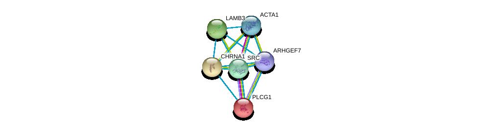 http://string-db.org/version_10/api/image/networkList?limit=0&targetmode=proteins&caller_identity=gene_cards&network_flavor=evidence&identifiers=9606.ENSP00000261007%0d%0a9606.ENSP00000244007%0d%0a9606.ENSP00000348384%0d%0a9606.ENSP00000350941%0d%0a9606.ENSP00000355645%0d%0a9606.ENSP00000364893%0d%0a