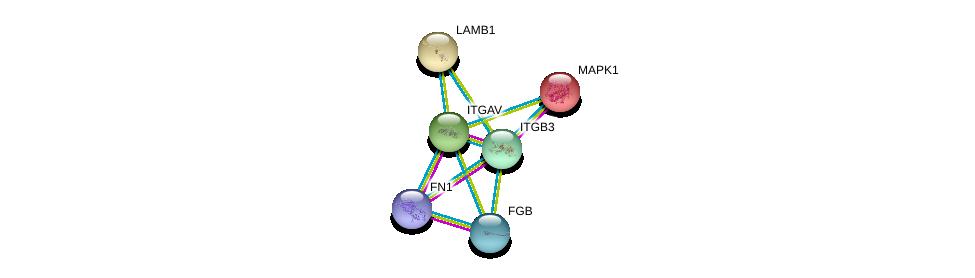 http://string-db.org/version_10/api/image/networkList?limit=0&targetmode=proteins&caller_identity=gene_cards&network_flavor=evidence&identifiers=9606.ENSP00000261023%0d%0a9606.ENSP00000262017%0d%0a9606.ENSP00000346839%0d%0a9606.ENSP00000306099%0d%0a9606.ENSP00000215832%0d%0a9606.ENSP00000222399%0d%0a
