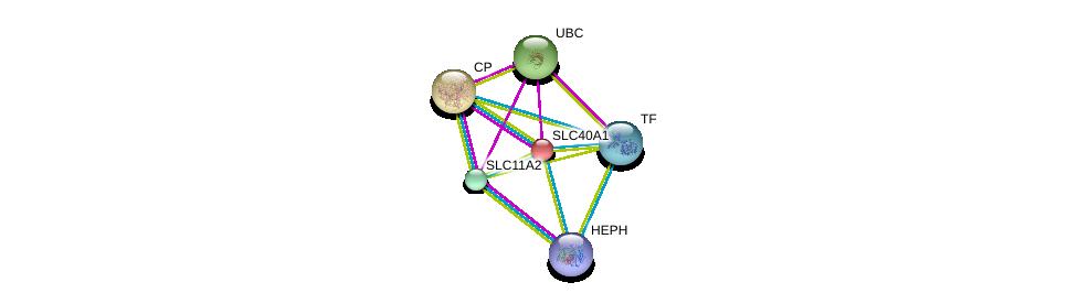 http://string-db.org/version_10/api/image/networkList?limit=0&targetmode=proteins&caller_identity=gene_cards&network_flavor=evidence&identifiers=9606.ENSP00000261024%0d%0a9606.ENSP00000378364%0d%0a9606.ENSP00000385834%0d%0a9606.ENSP00000430620%0d%0a9606.ENSP00000344818%0d%0a9606.ENSP00000264613%0d%0a