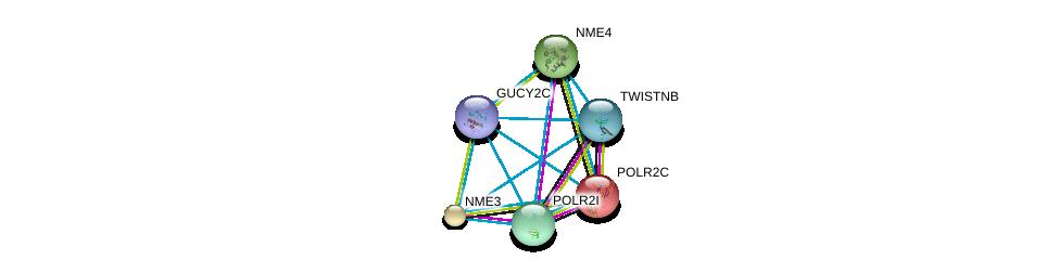 http://string-db.org/version_10/api/image/networkList?limit=0&targetmode=proteins&caller_identity=gene_cards&network_flavor=evidence&identifiers=9606.ENSP00000261170%0d%0a9606.ENSP00000219252%0d%0a9606.ENSP00000219302%0d%0a9606.ENSP00000219479%0d%0a9606.ENSP00000221859%0d%0a9606.ENSP00000222567%0d%0a