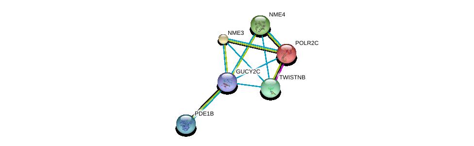 http://string-db.org/version_10/api/image/networkList?limit=0&targetmode=proteins&caller_identity=gene_cards&network_flavor=evidence&identifiers=9606.ENSP00000261170%0d%0a9606.ENSP00000222567%0d%0a9606.ENSP00000219479%0d%0a9606.ENSP00000219302%0d%0a9606.ENSP00000219252%0d%0a9606.ENSP00000243052%0d%0a