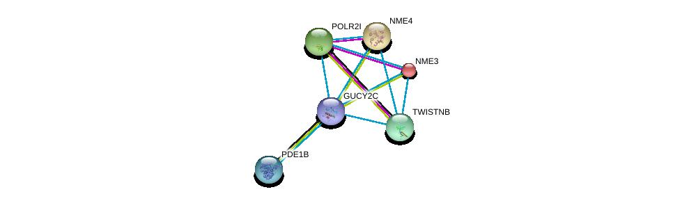 http://string-db.org/version_10/api/image/networkList?limit=0&targetmode=proteins&caller_identity=gene_cards&network_flavor=evidence&identifiers=9606.ENSP00000261170%0d%0a9606.ENSP00000222567%0d%0a9606.ENSP00000221859%0d%0a9606.ENSP00000219479%0d%0a9606.ENSP00000219302%0d%0a9606.ENSP00000243052%0d%0a