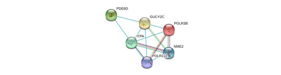 http://string-db.org/version_10/api/image/networkList?limit=0&targetmode=proteins&caller_identity=gene_cards&network_flavor=evidence&identifiers=9606.ENSP00000261170%0d%0a9606.ENSP00000369456%0d%0a9606.ENSP00000418603%0d%0a9606.ENSP00000228347%0d%0a9606.ENSP00000287600%0d%0a9606.ENSP00000376889%0d%0a