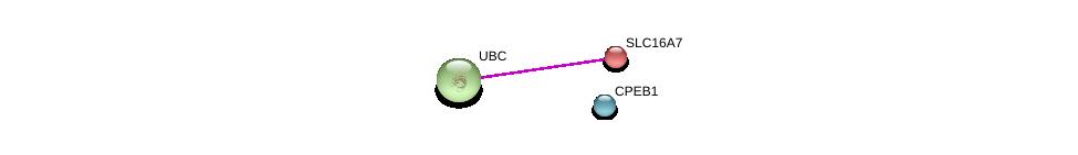 http://string-db.org/version_10/api/image/networkList?limit=0&targetmode=proteins&caller_identity=gene_cards&network_flavor=evidence&identifiers=9606.ENSP00000261187%0d%0a9606.ENSP00000344818%0d%0a9606.ENSP00000457881%0d%0a