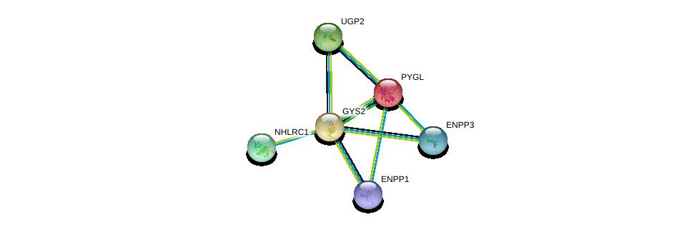 http://string-db.org/version_10/api/image/networkList?limit=0&targetmode=proteins&caller_identity=gene_cards&network_flavor=evidence&identifiers=9606.ENSP00000261195%0d%0a9606.ENSP00000216392%0d%0a9606.ENSP00000345464%0d%0a9606.ENSP00000354238%0d%0a9606.ENSP00000350265%0d%0a9606.ENSP00000338703%0d%0a