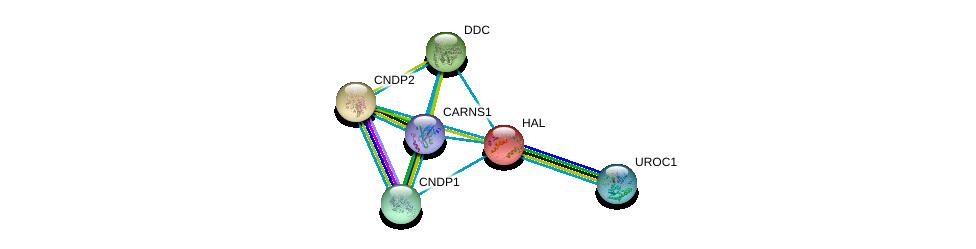 http://string-db.org/version_10/api/image/networkList?limit=0&targetmode=proteins&caller_identity=gene_cards&network_flavor=evidence&identifiers=9606.ENSP00000261208%0d%0a9606.ENSP00000373073%0d%0a9606.ENSP00000351682%0d%0a9606.ENSP00000325548%0d%0a9606.ENSP00000389009%0d%0a9606.ENSP00000350616%0d%0a