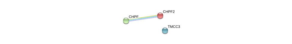 http://string-db.org/version_10/api/image/networkList?limit=0&targetmode=proteins&caller_identity=gene_cards&network_flavor=evidence&identifiers=9606.ENSP00000261226%0d%0a9606.ENSP00000035307%0d%0a9606.ENSP00000035307%0d%0a9606.ENSP00000243776%0d%0a