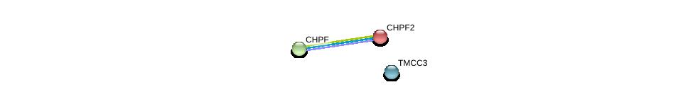 http://string-db.org/version_10/api/image/networkList?limit=0&targetmode=proteins&caller_identity=gene_cards&network_flavor=evidence&identifiers=9606.ENSP00000261226%0d%0a9606.ENSP00000243776%0d%0a9606.ENSP00000035307%0d%0a9606.ENSP00000035307%0d%0a