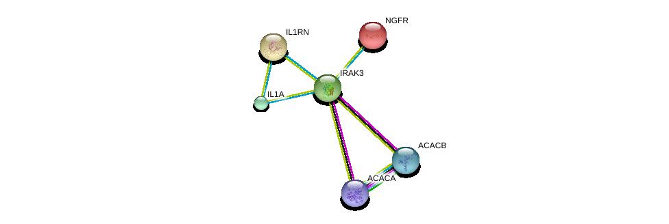 http://string-db.org/version_10/api/image/networkList?limit=0&targetmode=proteins&caller_identity=gene_cards&network_flavor=evidence&identifiers=9606.ENSP00000261233%0d%0a9606.ENSP00000263339%0d%0a9606.ENSP00000259206%0d%0a9606.ENSP00000172229%0d%0a9606.ENSP00000344789%0d%0a9606.ENSP00000341044%0d%0a