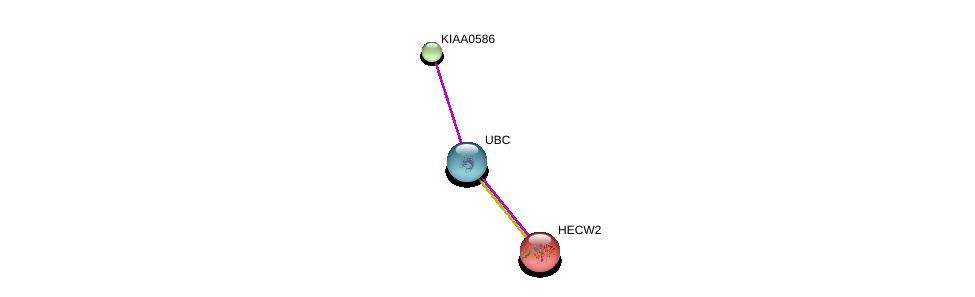 http://string-db.org/version_10/api/image/networkList?limit=0&targetmode=proteins&caller_identity=gene_cards&network_flavor=evidence&identifiers=9606.ENSP00000261244%0d%0a9606.ENSP00000344818%0d%0a9606.ENSP00000260983%0d%0a