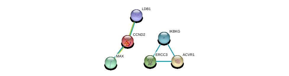 http://string-db.org/version_10/api/image/networkList?limit=0&targetmode=proteins&caller_identity=gene_cards&network_flavor=evidence&identifiers=9606.ENSP00000261254%0d%0a9606.ENSP00000351490%0d%0a9606.ENSP00000263640%0d%0a9606.ENSP00000392466%0d%0a9606.ENSP00000285398%0d%0a9606.ENSP00000358622%0d%0a