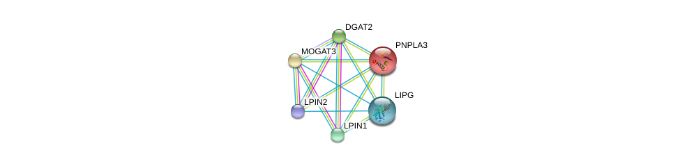 http://string-db.org/version_10/api/image/networkList?limit=0&targetmode=proteins&caller_identity=gene_cards&network_flavor=evidence&identifiers=9606.ENSP00000261292%0d%0a9606.ENSP00000216180%0d%0a9606.ENSP00000223114%0d%0a9606.ENSP00000228027%0d%0a9606.ENSP00000256720%0d%0a9606.ENSP00000261596%0d%0a