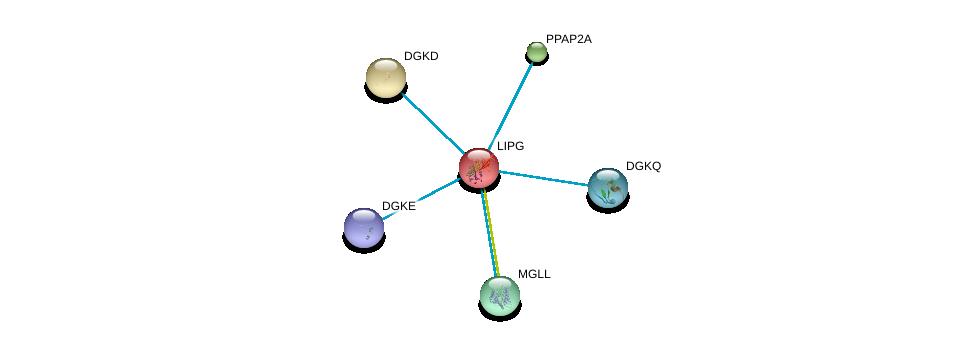 http://string-db.org/version_10/api/image/networkList?limit=0&targetmode=proteins&caller_identity=gene_cards&network_flavor=evidence&identifiers=9606.ENSP00000261292%0d%0a9606.ENSP00000264057%0d%0a9606.ENSP00000264775%0d%0a9606.ENSP00000265052%0d%0a9606.ENSP00000273814%0d%0a9606.ENSP00000284061%0d%0a