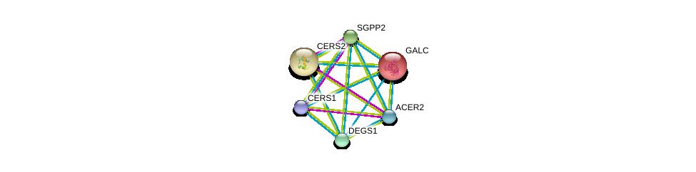 http://string-db.org/version_10/api/image/networkList?limit=0&targetmode=proteins&caller_identity=gene_cards&network_flavor=evidence&identifiers=9606.ENSP00000261304%0d%0a9606.ENSP00000315137%0d%0a9606.ENSP00000402697%0d%0a9606.ENSP00000342609%0d%0a9606.ENSP00000271688%0d%0a9606.ENSP00000316476%0d%0a
