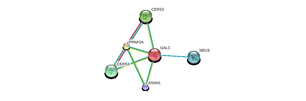 http://string-db.org/version_10/api/image/networkList?limit=0&targetmode=proteins&caller_identity=gene_cards&network_flavor=evidence&identifiers=9606.ENSP00000261304%0d%0a9606.ENSP00000371152%0d%0a9606.ENSP00000264775%0d%0a9606.ENSP00000271688%0d%0a9606.ENSP00000284382%0d%0a9606.ENSP00000294064%0d%0a