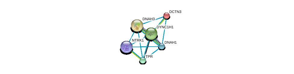 http://string-db.org/version_10/api/image/networkList?limit=0&targetmode=proteins&caller_identity=gene_cards&network_flavor=evidence&identifiers=9606.ENSP00000261383%0d%0a9606.ENSP00000259632%0d%0a9606.ENSP00000431418%0d%0a9606.ENSP00000348965%0d%0a9606.ENSP00000401514%0d%0a9606.ENSP00000356448%0d%0a