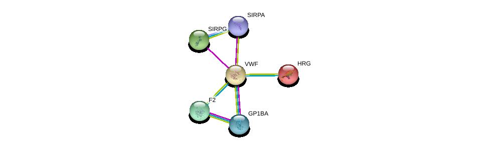 http://string-db.org/version_10/api/image/networkList?limit=0&targetmode=proteins&caller_identity=gene_cards&network_flavor=evidence&identifiers=9606.ENSP00000261405%0d%0a9606.ENSP00000329380%0d%0a9606.ENSP00000348307%0d%0a9606.ENSP00000305529%0d%0a9606.ENSP00000232003%0d%0a9606.ENSP00000308541%0d%0a