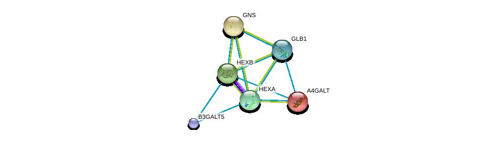 http://string-db.org/version_10/api/image/networkList?limit=0&targetmode=proteins&caller_identity=gene_cards&network_flavor=evidence&identifiers=9606.ENSP00000261416%0d%0a9606.ENSP00000343318%0d%0a9606.ENSP00000249005%0d%0a9606.ENSP00000258145%0d%0a9606.ENSP00000268097%0d%0a9606.ENSP00000306920%0d%0a