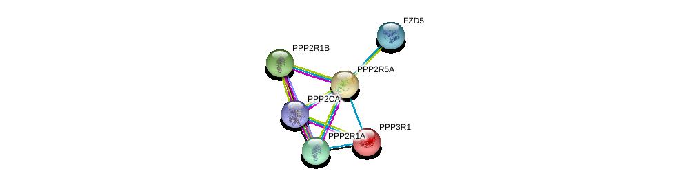 http://string-db.org/version_10/api/image/networkList?limit=0&targetmode=proteins&caller_identity=gene_cards&network_flavor=evidence&identifiers=9606.ENSP00000261461%0d%0a9606.ENSP00000311344%0d%0a9606.ENSP00000324804%0d%0a9606.ENSP00000418447%0d%0a9606.ENSP00000354607%0d%0a9606.ENSP00000234310%0d%0a