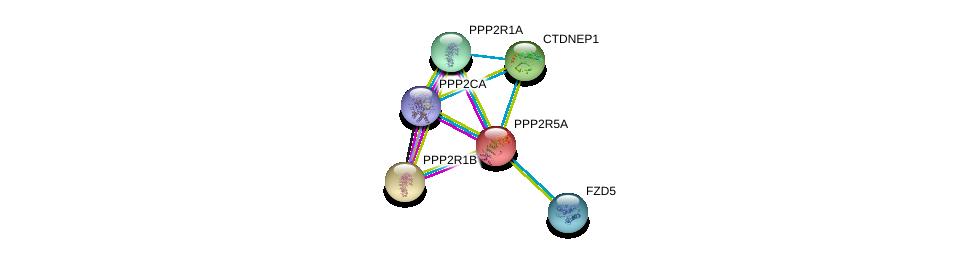 http://string-db.org/version_10/api/image/networkList?limit=0&targetmode=proteins&caller_identity=gene_cards&network_flavor=evidence&identifiers=9606.ENSP00000261461%0d%0a9606.ENSP00000418447%0d%0a9606.ENSP00000324804%0d%0a9606.ENSP00000311344%0d%0a9606.ENSP00000321732%0d%0a9606.ENSP00000354607%0d%0a