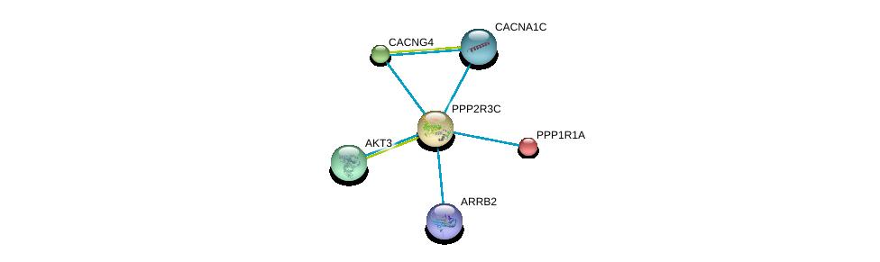 http://string-db.org/version_10/api/image/networkList?limit=0&targetmode=proteins&caller_identity=gene_cards&network_flavor=evidence&identifiers=9606.ENSP00000261475%0d%0a9606.ENSP00000257905%0d%0a9606.ENSP00000262138%0d%0a9606.ENSP00000263826%0d%0a9606.ENSP00000266376%0d%0a9606.ENSP00000269260%0d%0a