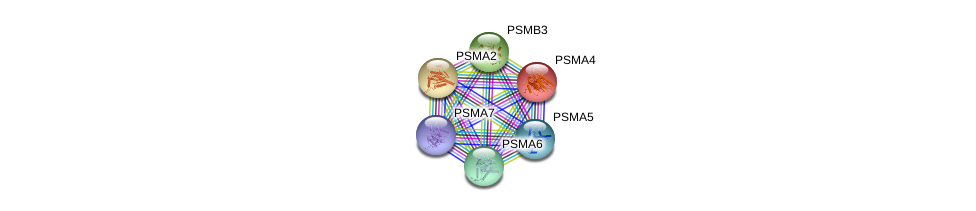 http://string-db.org/version_10/api/image/networkList?limit=0&targetmode=proteins&caller_identity=gene_cards&network_flavor=evidence&identifiers=9606.ENSP00000261479%0d%0a9606.ENSP00000359910%0d%0a9606.ENSP00000271308%0d%0a9606.ENSP00000225426%0d%0a9606.ENSP00000044462%0d%0a9606.ENSP00000223321%0d%0a