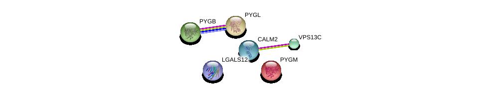 http://string-db.org/version_10/api/image/networkList?limit=0&targetmode=proteins&caller_identity=gene_cards&network_flavor=evidence&identifiers=9606.ENSP00000261517%0d%0a9606.ENSP00000339374%0d%0a9606.ENSP00000272298%0d%0a9606.ENSP00000216962%0d%0a9606.ENSP00000164139%0d%0a9606.ENSP00000216392%0d%0a