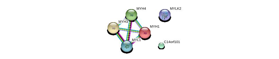 http://string-db.org/version_10/api/image/networkList?limit=0&targetmode=proteins&caller_identity=gene_cards&network_flavor=evidence&identifiers=9606.ENSP00000261556%0d%0a9606.ENSP00000307280%0d%0a9606.ENSP00000226207%0d%0a9606.ENSP00000255381%0d%0a9606.ENSP00000226209%0d%0a9606.ENSP00000365152%0d%0a