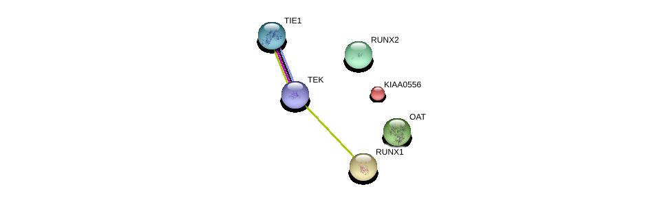 http://string-db.org/version_10/api/image/networkList?limit=0&targetmode=proteins&caller_identity=gene_cards&network_flavor=evidence&identifiers=9606.ENSP00000261588%0d%0a9606.ENSP00000360493%0d%0a9606.ENSP00000361554%0d%0a9606.ENSP00000369375%0d%0a9606.ENSP00000357838%0d%0a9606.ENSP00000300305%0d%0a