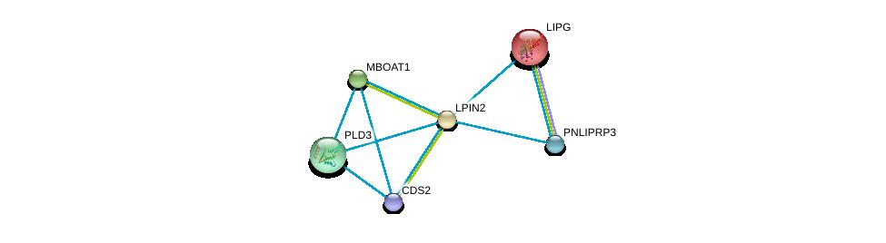 http://string-db.org/version_10/api/image/networkList?limit=0&targetmode=proteins&caller_identity=gene_cards&network_flavor=evidence&identifiers=9606.ENSP00000261596%0d%0a9606.ENSP00000358232%0d%0a9606.ENSP00000261292%0d%0a9606.ENSP00000348901%0d%0a9606.ENSP00000324944%0d%0a9606.ENSP00000419879%0d%0a