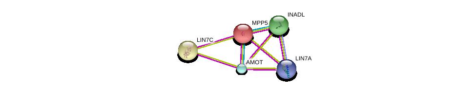 http://string-db.org/version_10/api/image/networkList?limit=0&targetmode=proteins&caller_identity=gene_cards&network_flavor=evidence&identifiers=9606.ENSP00000261681%0d%0a9606.ENSP00000361027%0d%0a9606.ENSP00000361027%0d%0a9606.ENSP00000447488%0d%0a9606.ENSP00000360200%0d%0a9606.ENSP00000278193%0d%0a