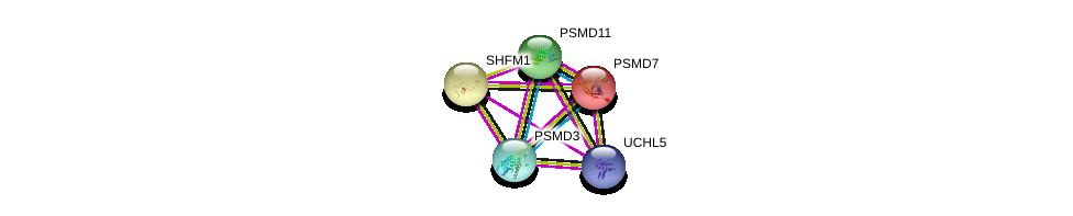 http://string-db.org/version_10/api/image/networkList?limit=0&targetmode=proteins&caller_identity=gene_cards&network_flavor=evidence&identifiers=9606.ENSP00000261712%0d%0a9606.ENSP00000356425%0d%0a9606.ENSP00000248566%0d%0a9606.ENSP00000248566%0d%0a9606.ENSP00000219313%0d%0a9606.ENSP00000264639%0d%0a