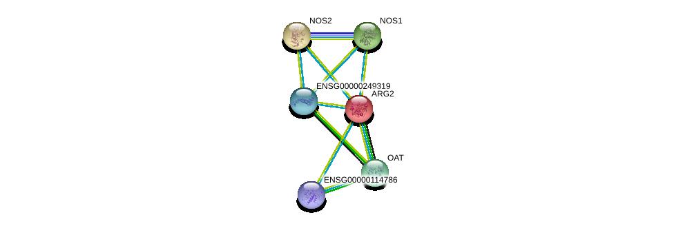 http://string-db.org/version_10/api/image/networkList?limit=0&targetmode=proteins&caller_identity=gene_cards&network_flavor=evidence&identifiers=9606.ENSP00000261783%0d%0a9606.ENSP00000337459%0d%0a9606.ENSP00000357838%0d%0a9606.ENSP00000396527%0d%0a9606.ENSP00000420487%0d%0a9606.ENSP00000327251%0d%0a