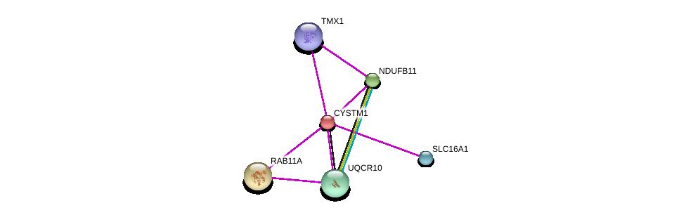 http://string-db.org/version_10/api/image/networkList?limit=0&targetmode=proteins&caller_identity=gene_cards&network_flavor=evidence&identifiers=9606.ENSP00000261811%0d%0a9606.ENSP00000332887%0d%0a9606.ENSP00000393316%0d%0a9606.ENSP00000261890%0d%0a9606.ENSP00000276062%0d%0a9606.ENSP00000358640%0d%0a