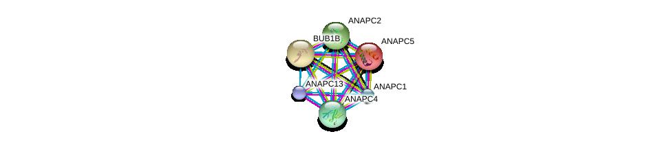 http://string-db.org/version_10/api/image/networkList?limit=0&targetmode=proteins&caller_identity=gene_cards&network_flavor=evidence&identifiers=9606.ENSP00000261819%0d%0a9606.ENSP00000287598%0d%0a9606.ENSP00000314004%0d%0a9606.ENSP00000318775%0d%0a9606.ENSP00000339109%0d%0a9606.ENSP00000346987%0d%0a