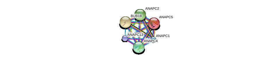 http://string-db.org/version_10/api/image/networkList?limit=0&targetmode=proteins&caller_identity=gene_cards&network_flavor=evidence&identifiers=9606.ENSP00000261819%0d%0a9606.ENSP00000339109%0d%0a9606.ENSP00000287598%0d%0a9606.ENSP00000314004%0d%0a9606.ENSP00000318775%0d%0a9606.ENSP00000346987%0d%0a