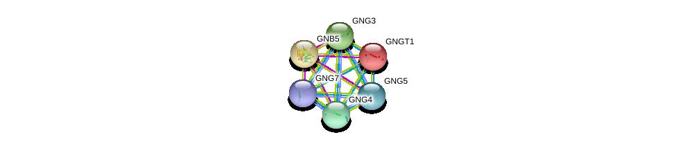 http://string-db.org/version_10/api/image/networkList?limit=0&targetmode=proteins&caller_identity=gene_cards&network_flavor=evidence&identifiers=9606.ENSP00000261837%0d%0a9606.ENSP00000294117%0d%0a9606.ENSP00000371594%0d%0a9606.ENSP00000359675%0d%0a9606.ENSP00000355556%0d%0a9606.ENSP00000248572%0d%0a
