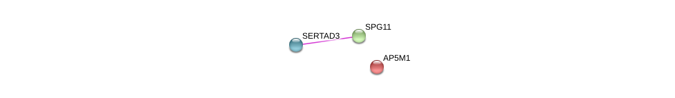 http://string-db.org/version_10/api/image/networkList?limit=0&targetmode=proteins&caller_identity=gene_cards&network_flavor=evidence&identifiers=9606.ENSP00000261866%0d%0a9606.ENSP00000261558%0d%0a9606.ENSP00000325414%0d%0a