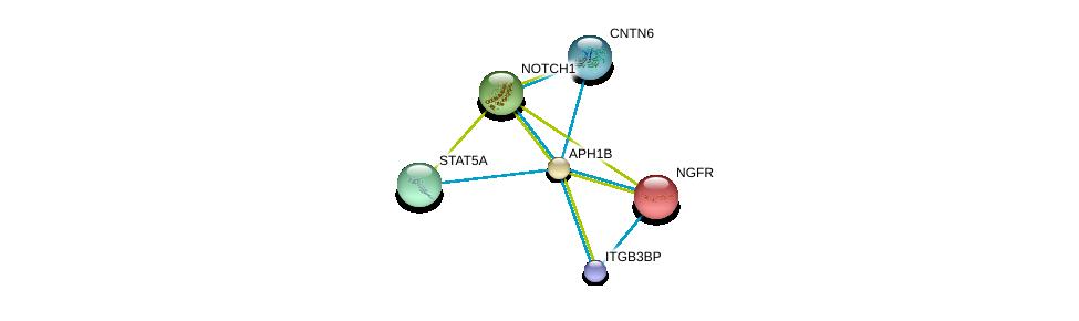 http://string-db.org/version_10/api/image/networkList?limit=0&targetmode=proteins&caller_identity=gene_cards&network_flavor=evidence&identifiers=9606.ENSP00000261879%0d%0a9606.ENSP00000277541%0d%0a9606.ENSP00000360133%0d%0a9606.ENSP00000341882%0d%0a9606.ENSP00000341208%0d%0a9606.ENSP00000172229%0d%0a