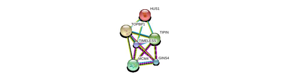 http://string-db.org/version_10/api/image/networkList?limit=0&targetmode=proteins&caller_identity=gene_cards&network_flavor=evidence&identifiers=9606.ENSP00000261881%0d%0a9606.ENSP00000450607%0d%0a9606.ENSP00000276533%0d%0a9606.ENSP00000262105%0d%0a9606.ENSP00000260810%0d%0a9606.ENSP00000258774%0d%0a