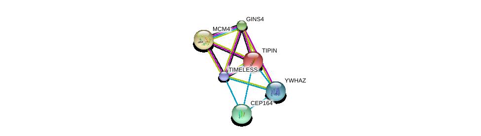 http://string-db.org/version_10/api/image/networkList?limit=0&targetmode=proteins&caller_identity=gene_cards&network_flavor=evidence&identifiers=9606.ENSP00000261881%0d%0a9606.ENSP00000450607%0d%0a9606.ENSP00000276533%0d%0a9606.ENSP00000262105%0d%0a9606.ENSP00000278935%0d%0a9606.ENSP00000309503%0d%0a
